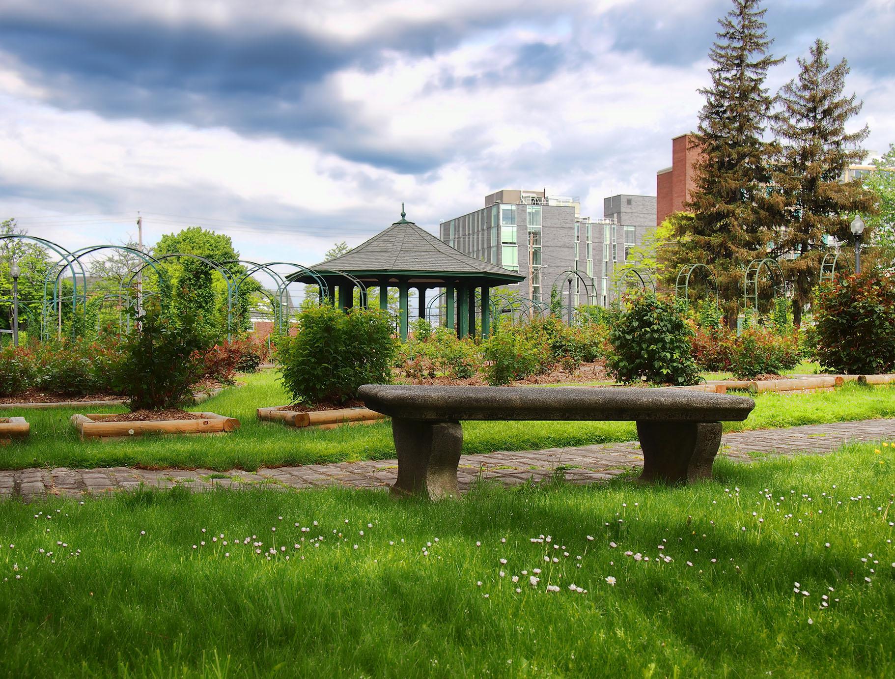 syracuse garden
