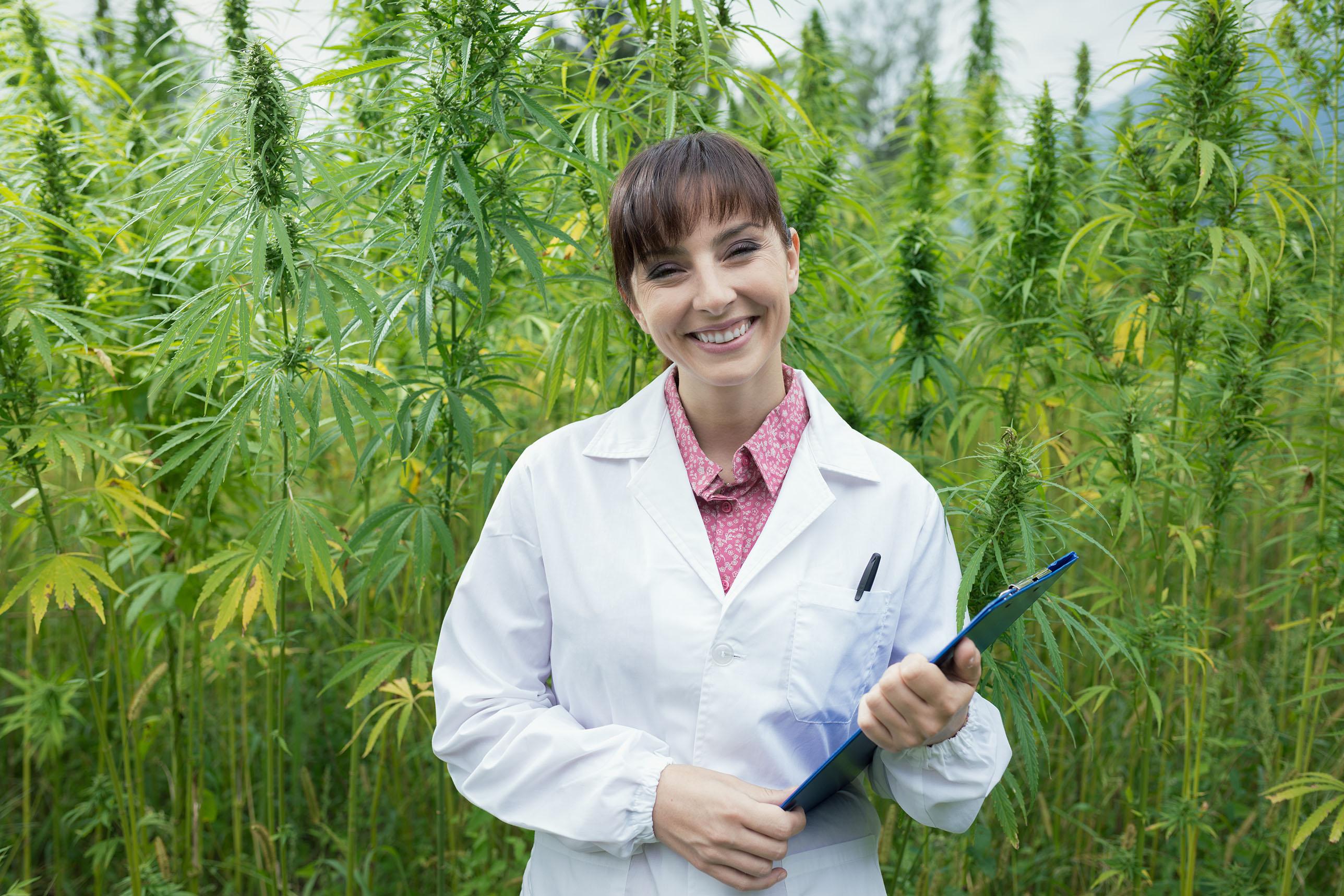 Scientist Cannabis
