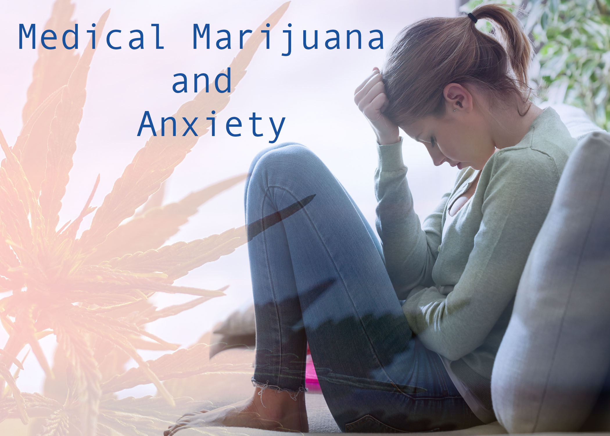 Medical Marijuana and Anxiety
