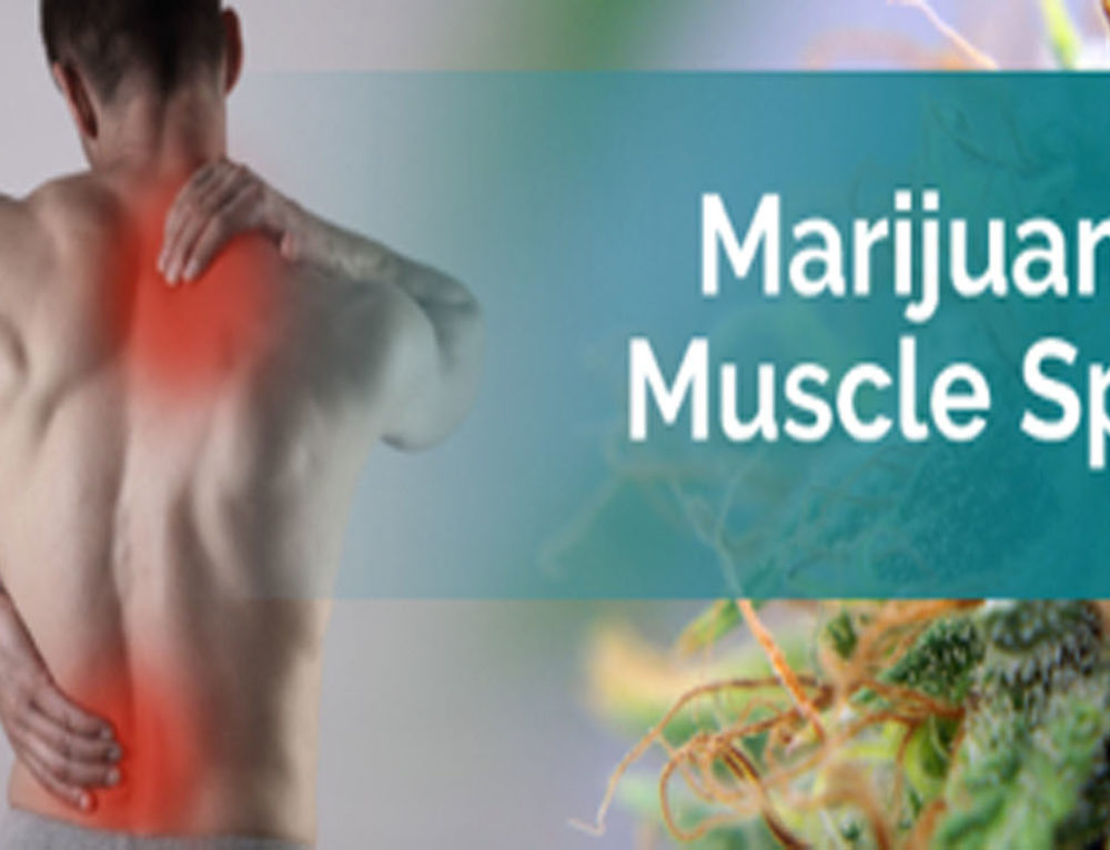 Spasticity Relief through Marijuana Therapy