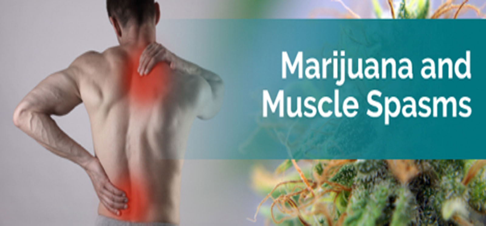 Medical Marijuana Muscle Spasms
