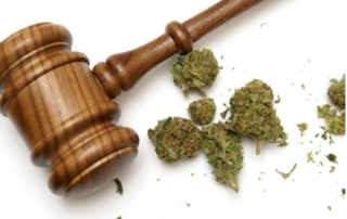 History of Marijuana Laws in the United States