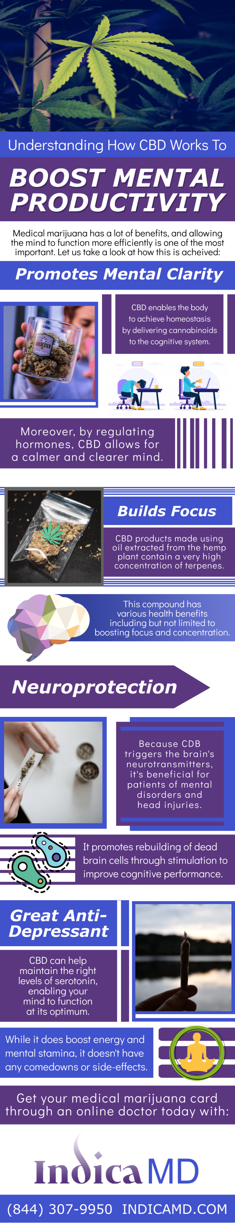Understanding How CBD Works To Boost Mental Productivity