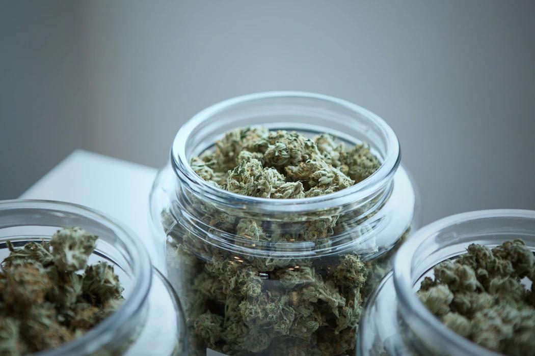 Is Marijuana Addictive? A Discussion