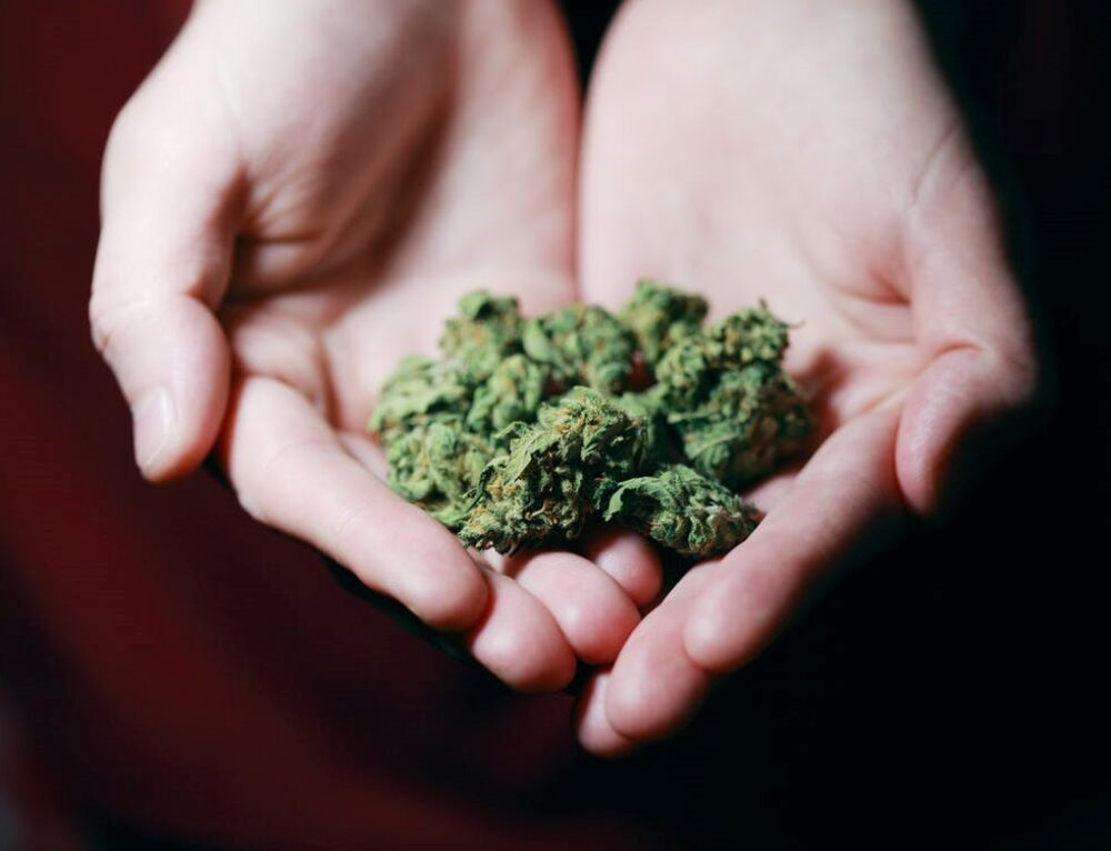 3 Things You Should Know Before Getting A Medical Marijuana Card