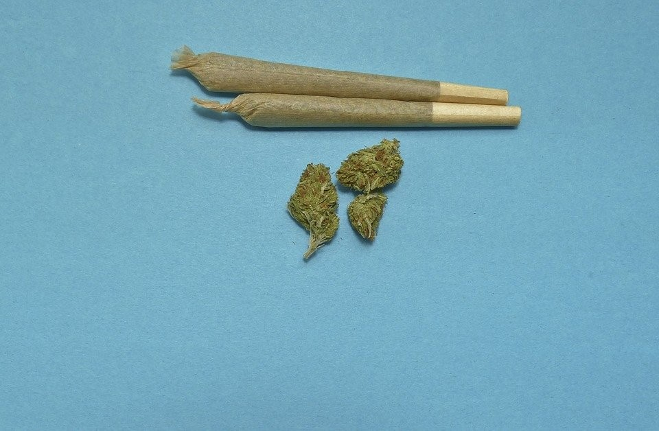 Weed and Cannabis