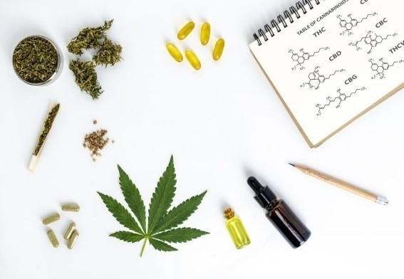 CBD-cannabinoid-medical-marijuana-hemp-seed-soil