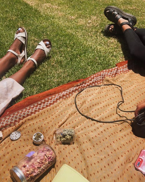 Women in a park relax with cannabis flowers beside them.